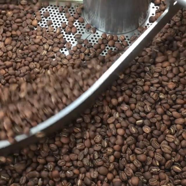 Der frisch geröstete Kaffee wird gekühlt